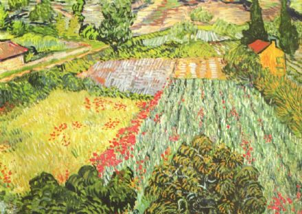 Van Gogh, Vincent: Field of Poppies. Fine Art Print/Poster. Sizes: A4/A3/A2/A1 (0043)
